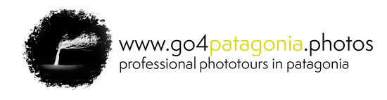 Logo Go 4 Patagonia