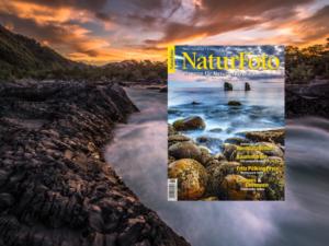 Bei diesem Fotobeitrag dreht sich alles um Nordpatagonien, ein landschaftlicher Superlativ im Süden von Chile. Der Landstrich überzeugt mit beeindruckenden Landschaften. Ein Mus für Naturfotografen.